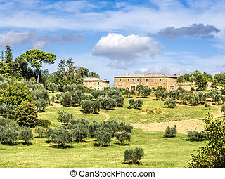 Typical Tuscany house - Image of a typical house in Tuscany...