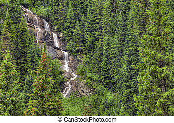 Typical waterfall you might see in Yoho National Park in British Columbia Canada. The rugged Rocky Mountains are all around you as you drive through the park and waterfalls can be seen through the trees.