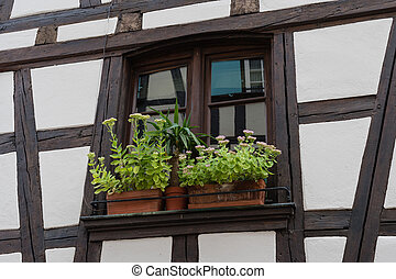 Typical window with flower of an old house in Strasbourg