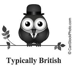 Typically British - Comical bird typically British message...