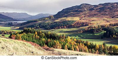 typique, amulree, freuchie, paysage, perthshire, loch, ...