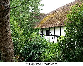 petite maison toit couvert chaume typique adare toit photographie de stock rechercher. Black Bedroom Furniture Sets. Home Design Ideas