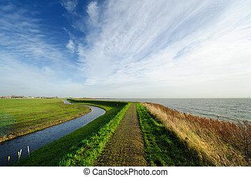 typisch, hollandse, land, landscape, in, marken