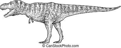 Tyrannosaurus illustration, drawing, engraving, ink, line art, vector