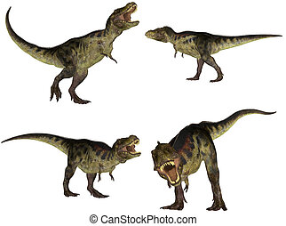Illustration of a pack of four (4) Tyrannosaurus with different poses isolated on a white background