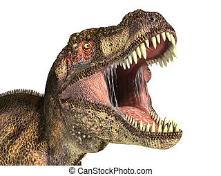 Tyrannosaurus Rex dinosaur, photorealistic representation, ...