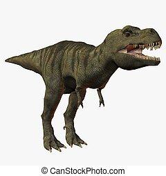 Tyrannosaurus Rex - 3D Animal