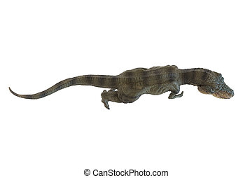 Tyrannosaurus rex isolated on white background in top view