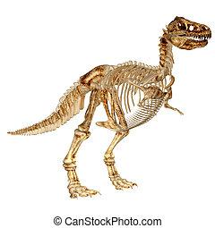 Tyrannosaurus Rex's Skeleton - Illustration of a...