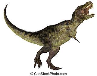 Tyrannosaurus - Illustration of a Tyrannosaurus (dinosaur...