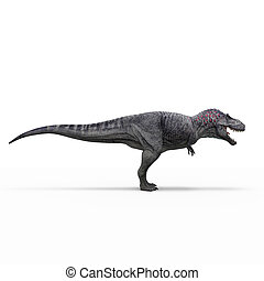 tyranosaur, isolato, interpretazione, fondo, bianco, 3d