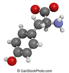 Tyrosine (Tyr, Y) amino acid, molecular model. Amino acids are the building blocks of all proteins. Atoms are represented as spheres with conventional color coding: hydrogen (white), carbon (grey), oxygen (red), nitrogen (blue)