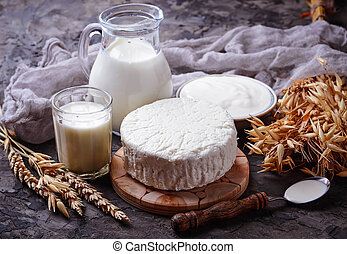Tzfat cheese, milk and wheat grains. Symbols of judaic holiday Shavuot. Selective focus