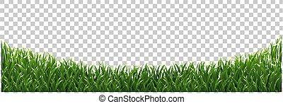 ułożyć, odizolowany, zielone tło, trawa, przeźroczysty