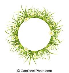 ułożyć, trawa, margerytki, okrągły