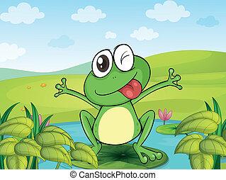 uśmiechanie się, żaba