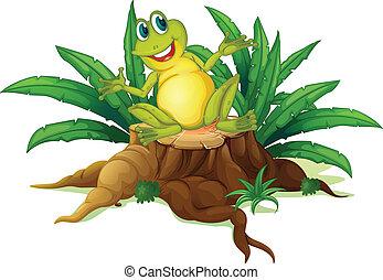 uśmiechanie się, drewno, nad, żaba