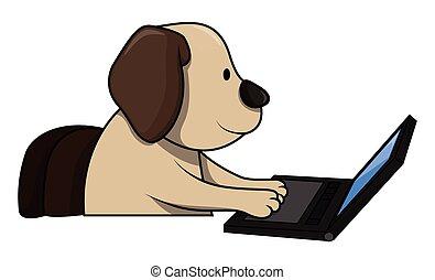 używając komputer, pies