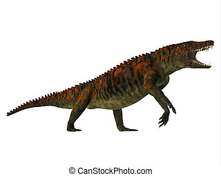 Uberabasuchus Side Profile