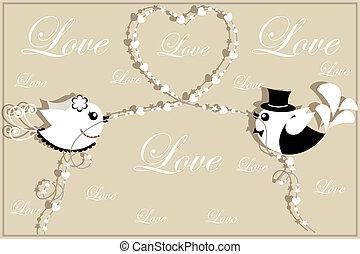 uccelli, di, il, sposa, e, sposo.