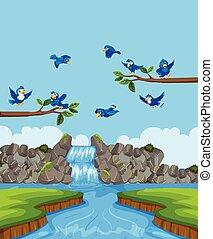 uccelli, in, paesaggio natura
