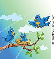uccello blu, famiglia, mattina