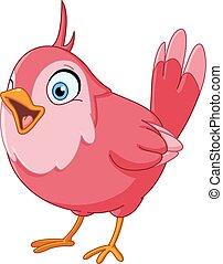 uccello canta