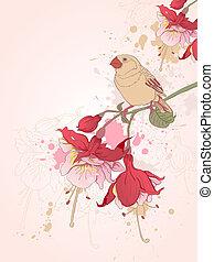 uccello, fondo, floreale
