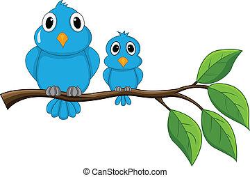 uccello, ramo, seduta