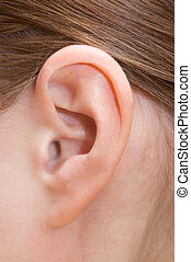 ucho, closeup, ludzki