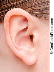 ucho, kobieta, młody