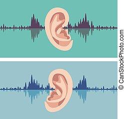 ucho, przez, ludzki, soundwave