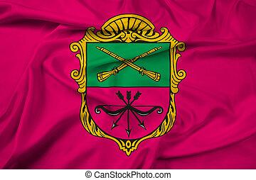 ucrânia, bandeira acenando, (zaporozhye), zaporizhia