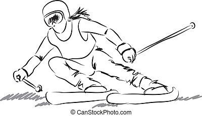 udrustning, kvinde, illustrati, ski