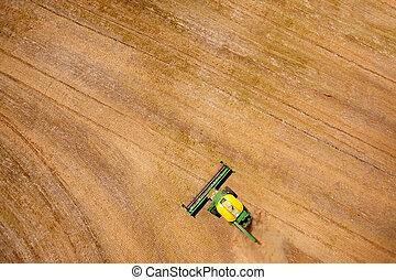 udsigt overhead, i, høstmaskine, ind, felt