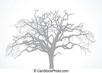 udtørr, træ, vektor, gamle, eg, -, afdødte, uden, bar, gale, silhuet, blad