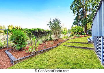 udvar, fű, zöld, kert