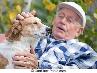 udvar, idősebb ember, kutya, ember