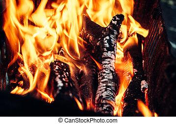 udvar, tűzifa, ellen, sötét háttér, elég