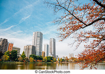 Ueno park Shinobazu pond and modern buildings at autumn in Tokyo, Japan