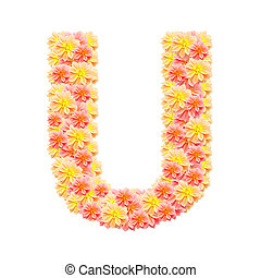 U,flower alphabet isolated on white
