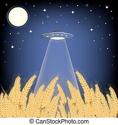 UFO in cornfield.