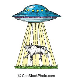 UFO kidnaps the cow color sketch engraving vector illustration. Scratch board style imitation. Hand drawn image.