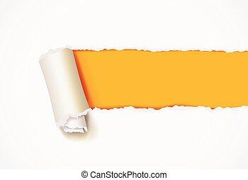 ufryzować, od, biały, papier