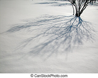 uggia, albero, neve