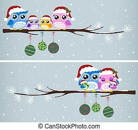 uggla, jul, släkt firande