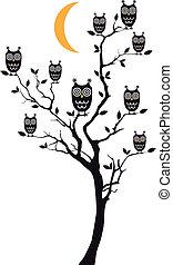 ugglor, sittande, vektor, träd