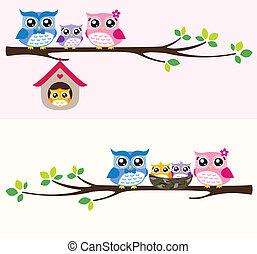 ugle, familie, illustration