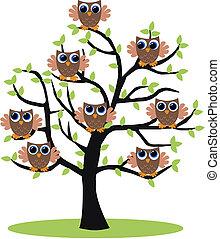 ugler, ind, en, træ