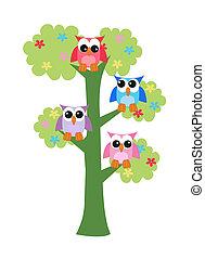 ugler, træ, farverig, siddende